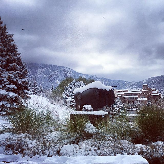 Thanks to Mikayla for this photo from Boulder. She is working CU volleyball today. SKO BUFFS! . . . . #skobuffs #CUboulder #snowday #beautifulcolorado #stadiummedical #bestplacetowork #eventmedical #emslife #paramedic #emt #specialevents
