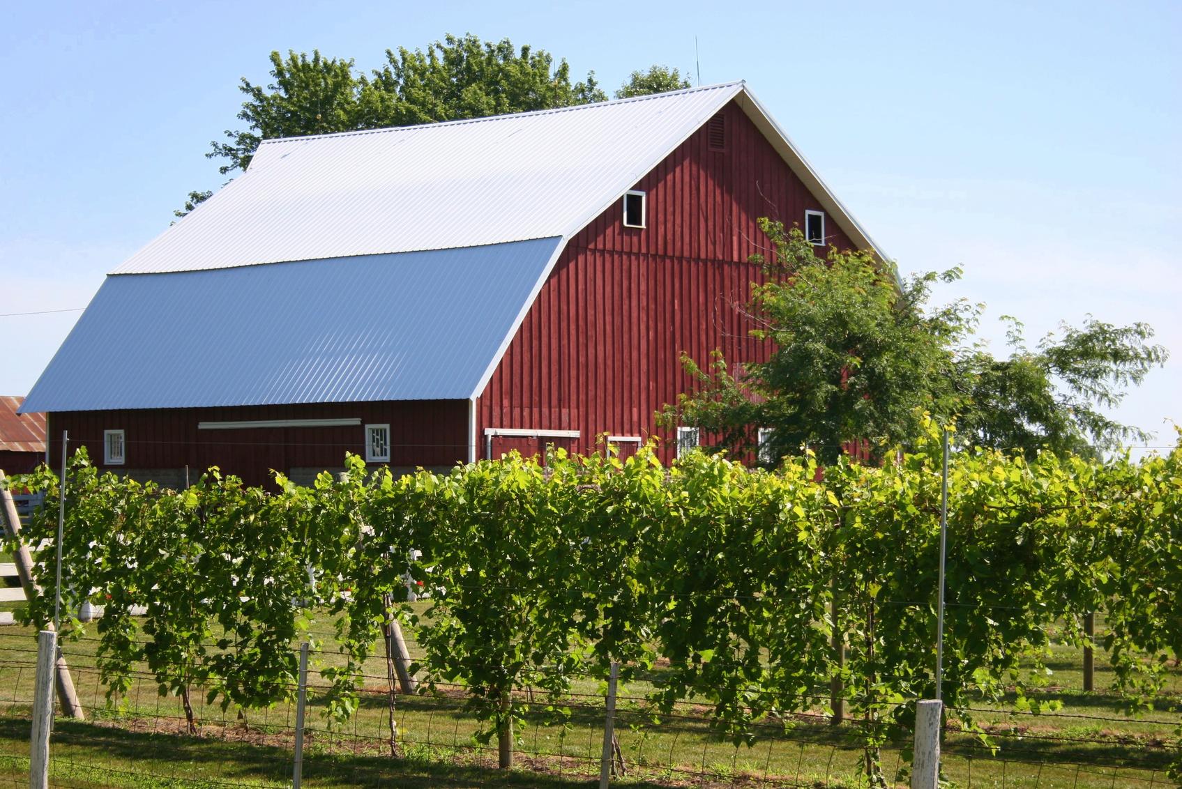 ohio-wines.jpg
