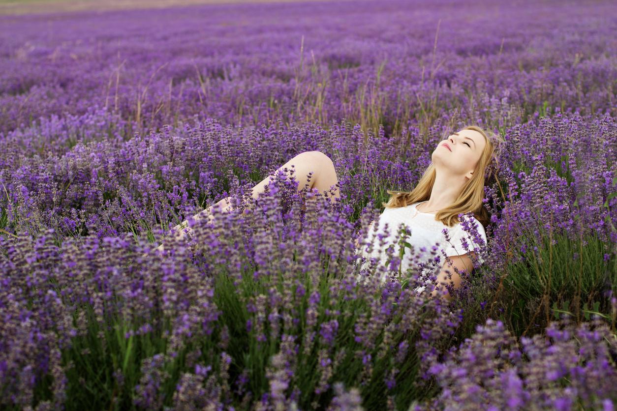 lavender-relax.jpg