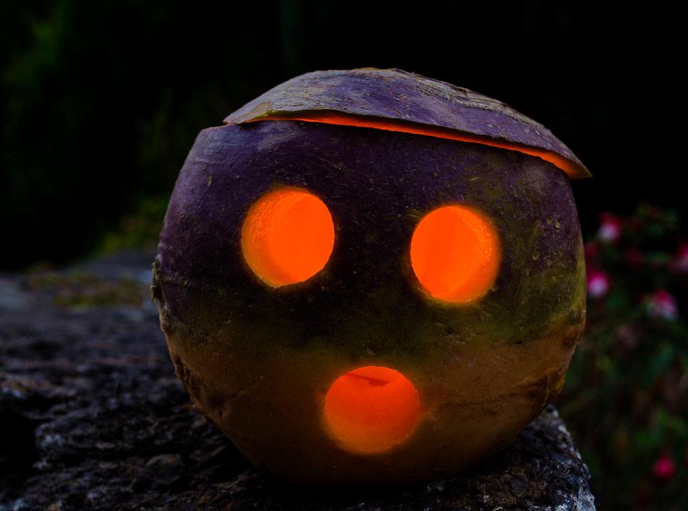 pure-enchantment-turnip.jpg