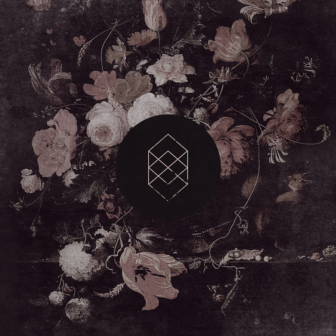 KOKOMO_Monochrome-Noise-Love_Vinyl_Cover.jpg