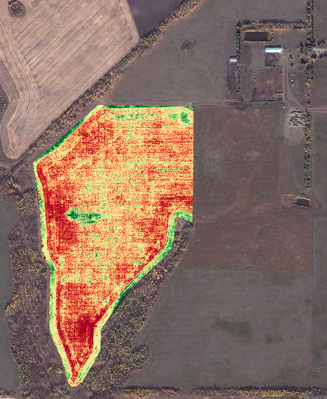 NDVI Image: Fababeans, taken in 2015.