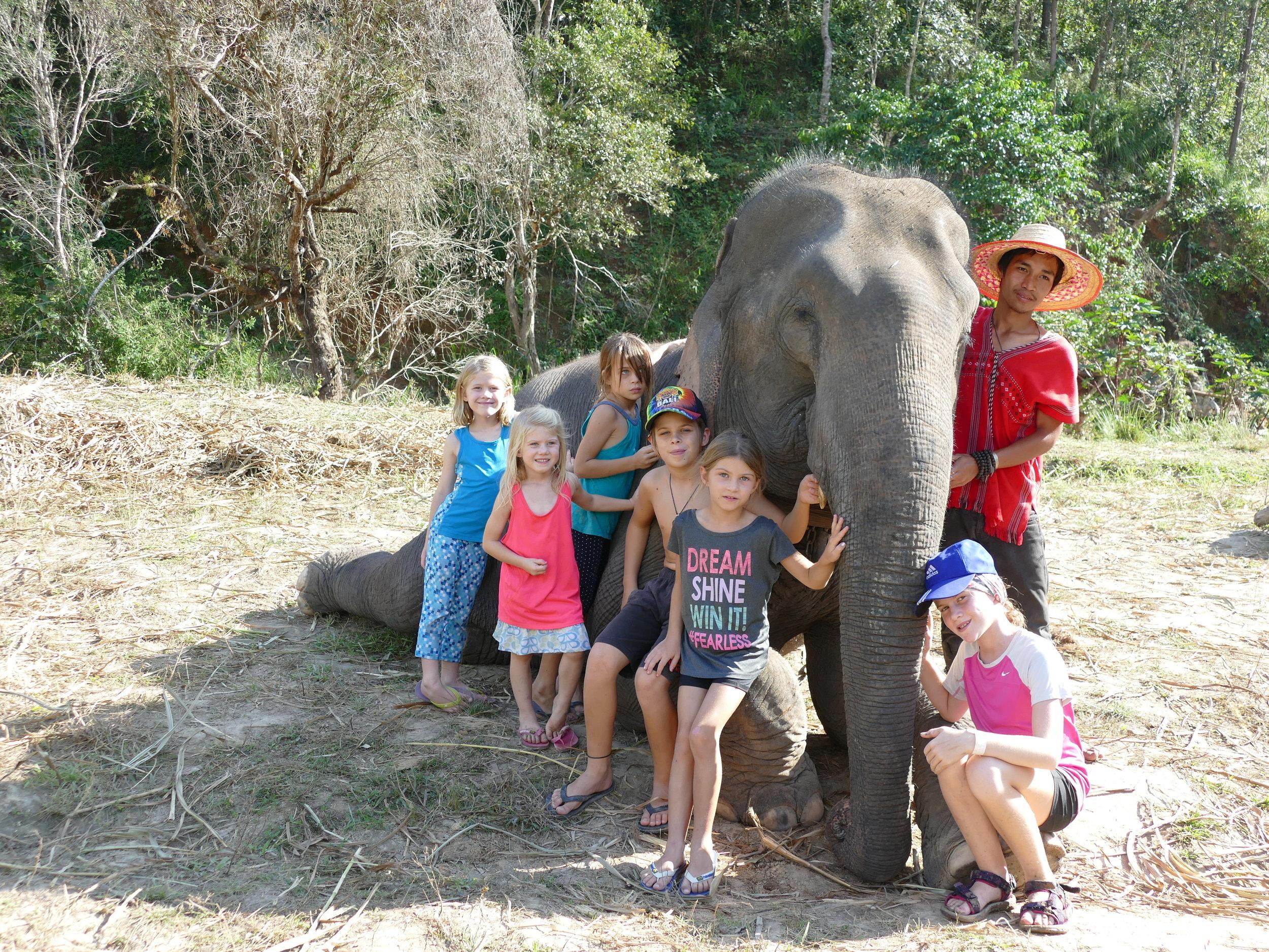 Des amis et un éléphant... le bonheur des enfants!