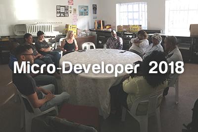 Micro-Developer-2018.png