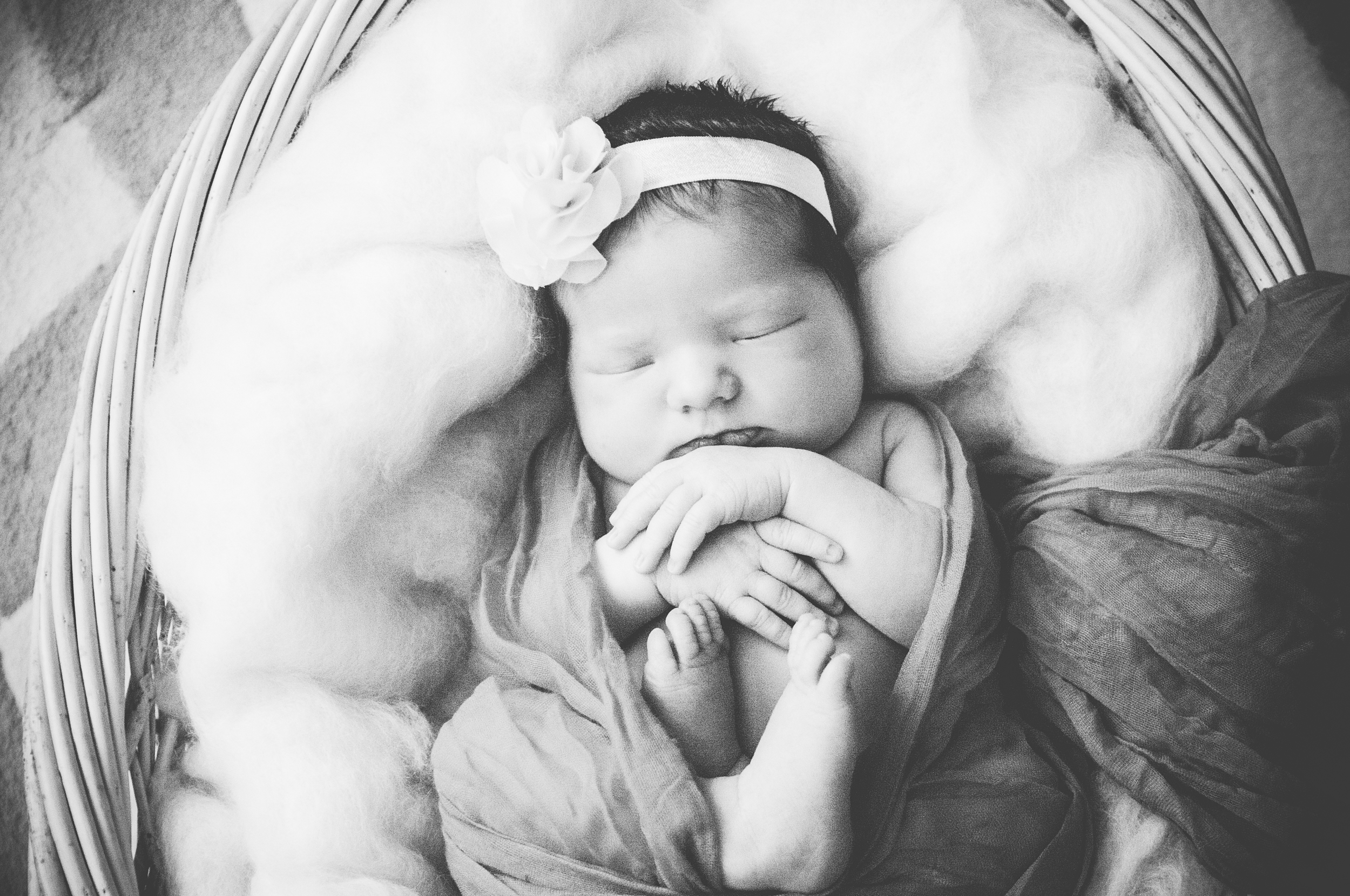 babygracelynn-191.jpg