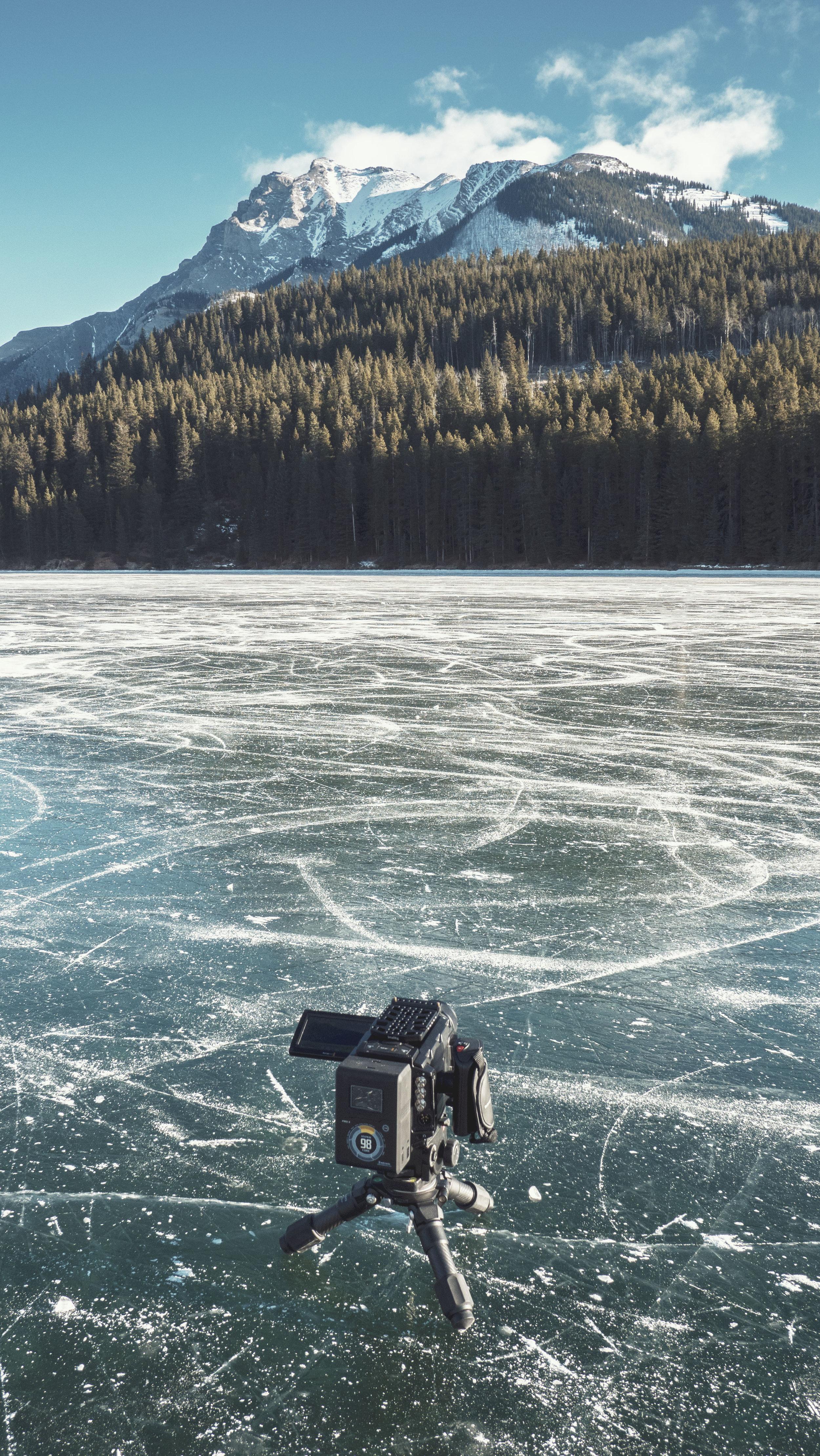 VMC-TaylorHead-Alberta-JackLake2.jpg