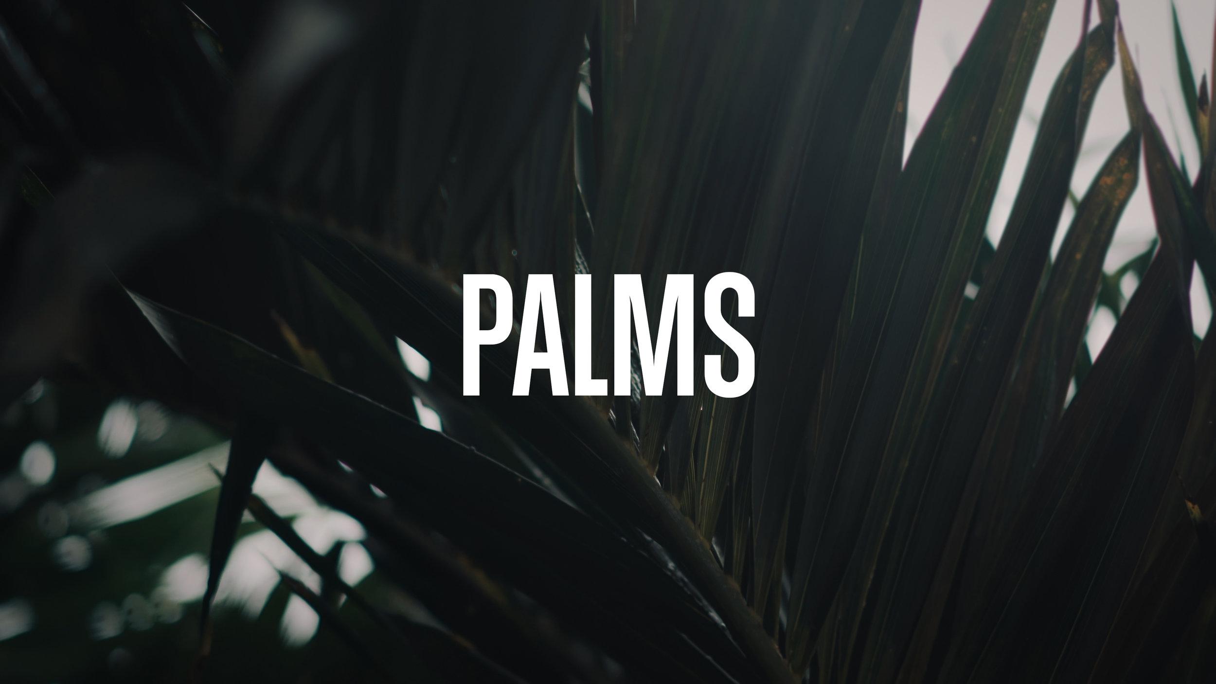 VMC Palms Title.jpg