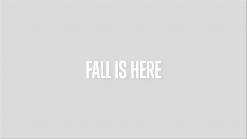 FALL-IS-HERE.png