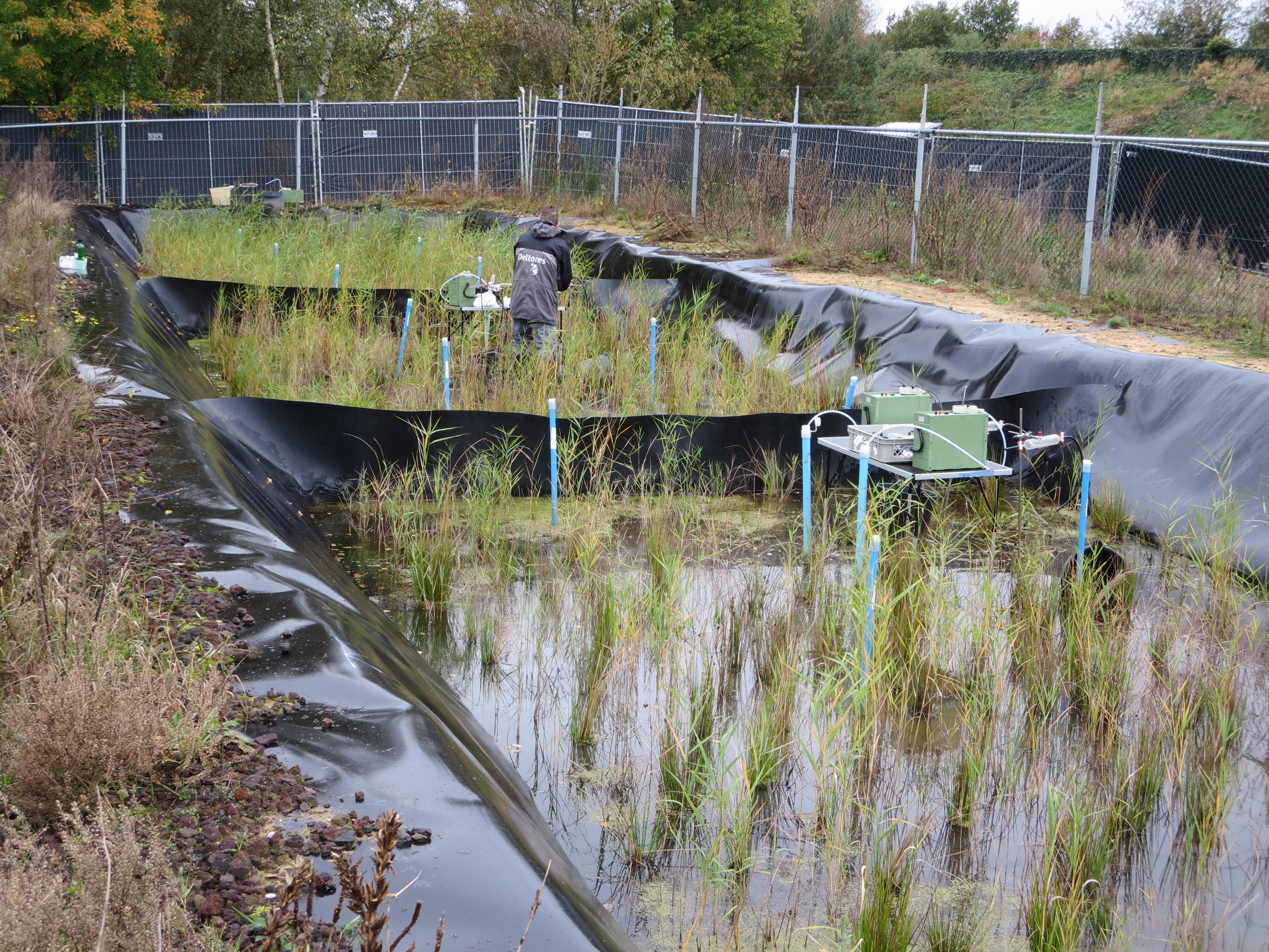 Engineered wetland.