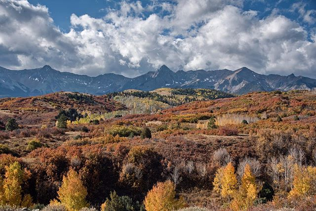 A little bit of every color . . . . . . . . #coloradoinstagram #coloradophotography #coloradocolors #fallcolors #autumncolors #leafpeeping #landscape_lovers #mountainphotography #coloradountamed #colorfulcolorado #jj_colorado #coloradotography #sanjuanmountains #leafpeepers