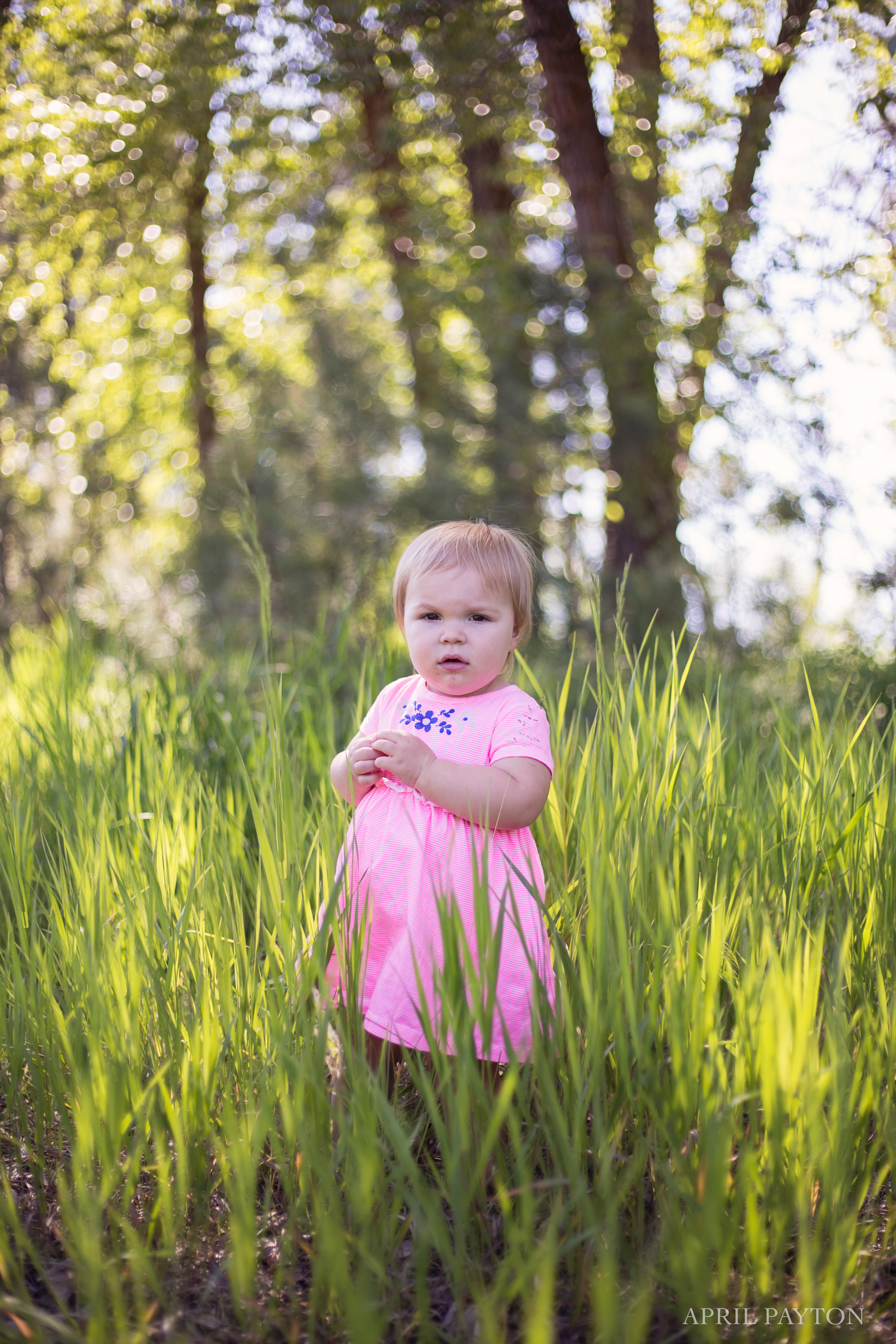 missoula-montana-natural-light-family-photographer.jpg