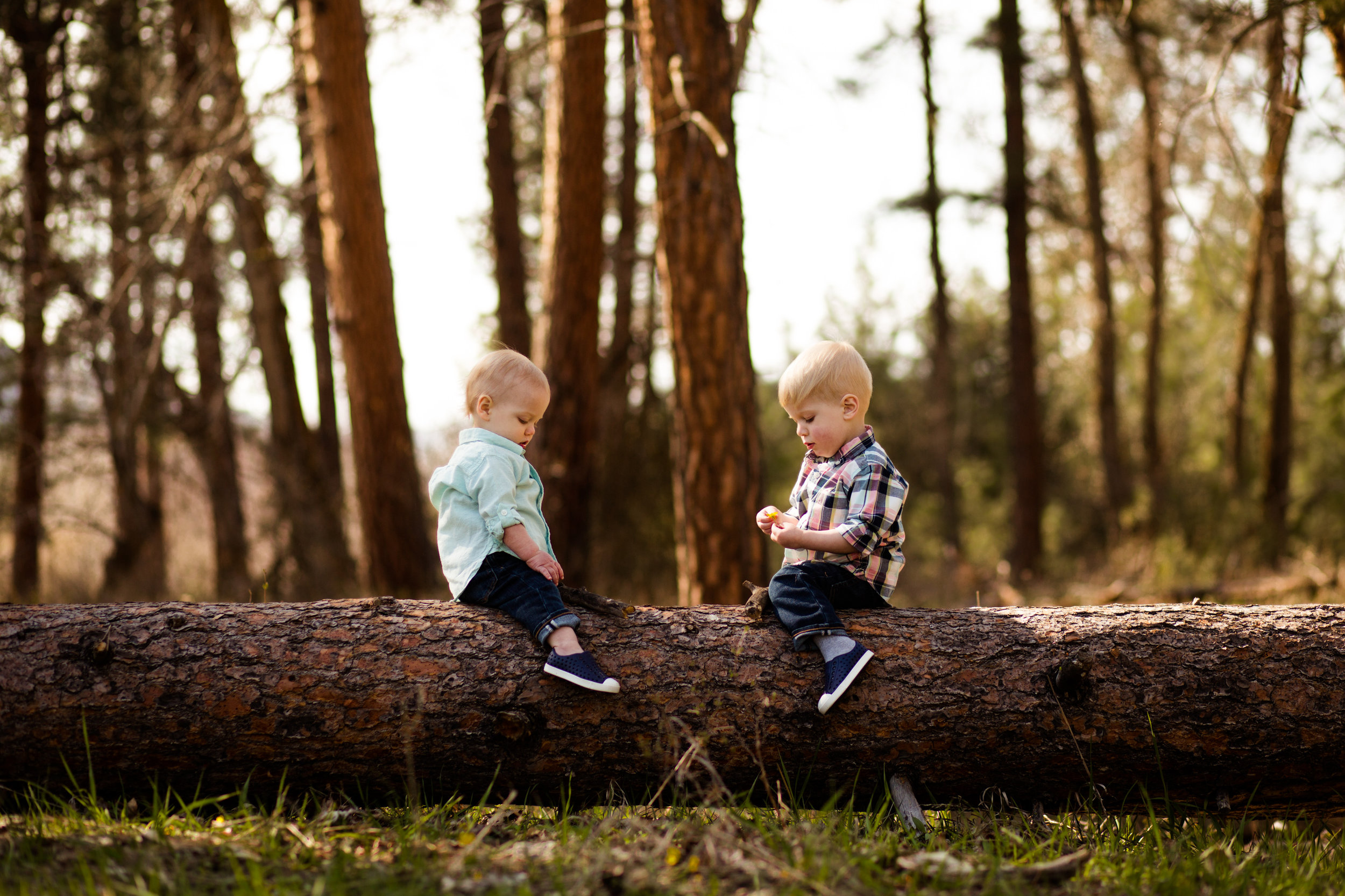 missoula-montana-family-photographer-1.jpg