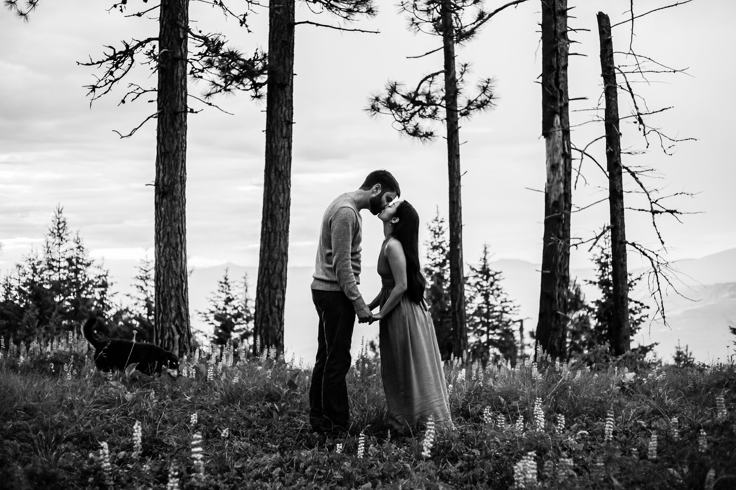 missoula-montana-wedding-engagement-photographer-2.jpg