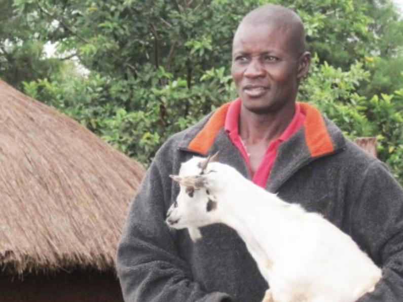 Every new client we engage provides a Kenyan family with a new source of income through sponsoring a goat and the provision of breeding infrastructure.