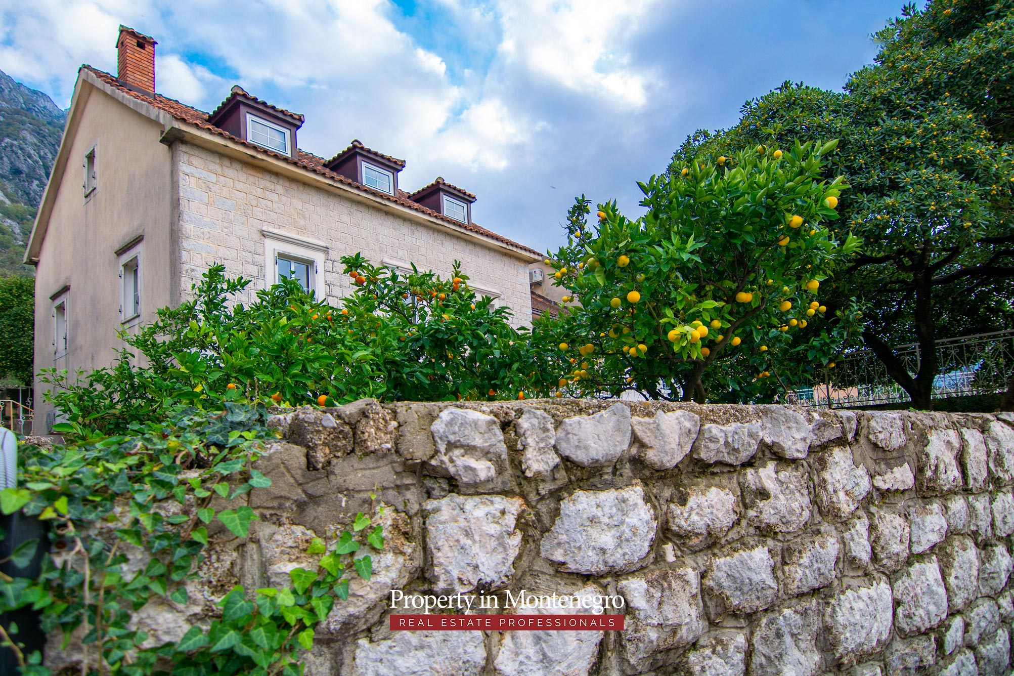 First line villa for sale in Kotor