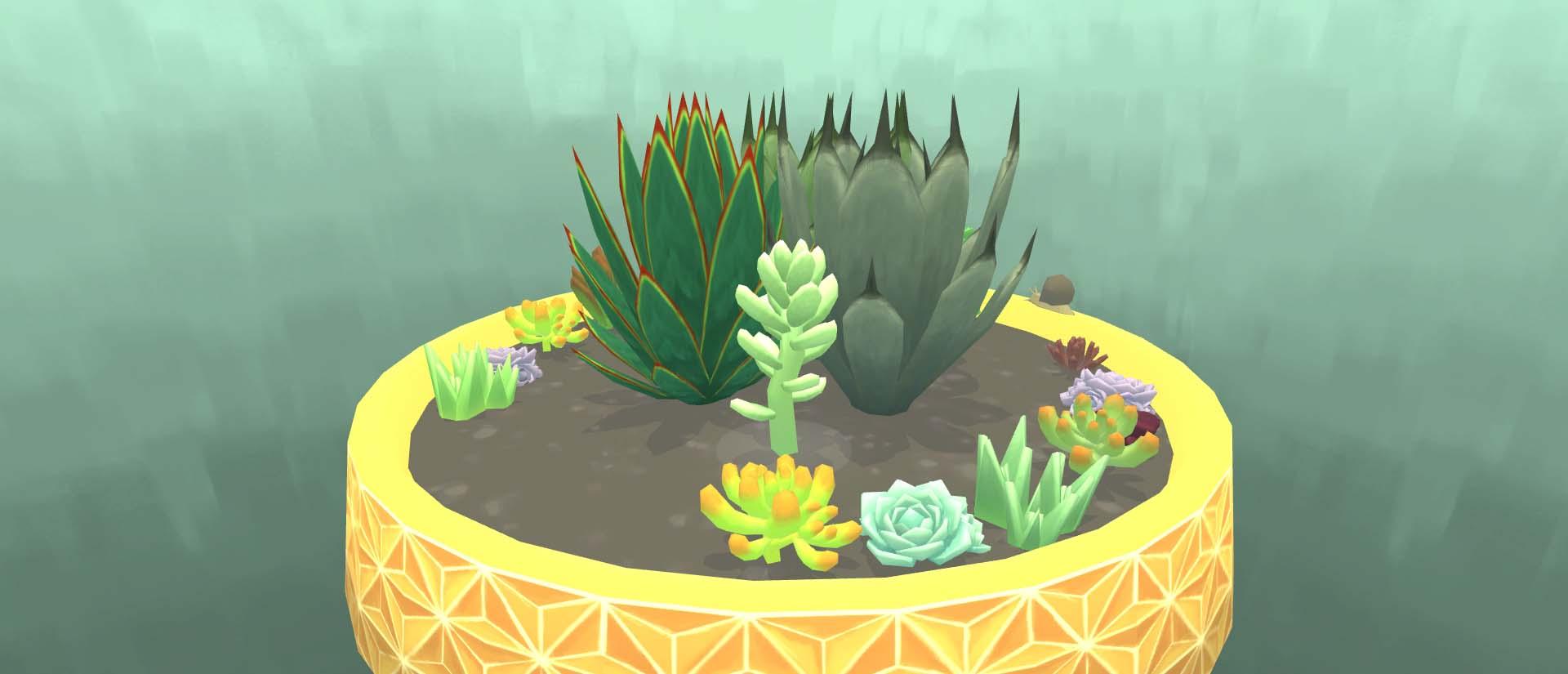 Viridi Succulents