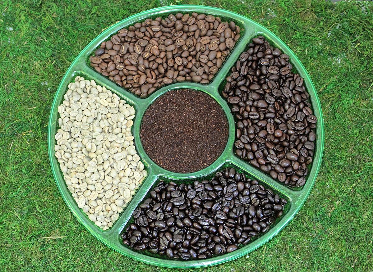 Location Peru: green beans