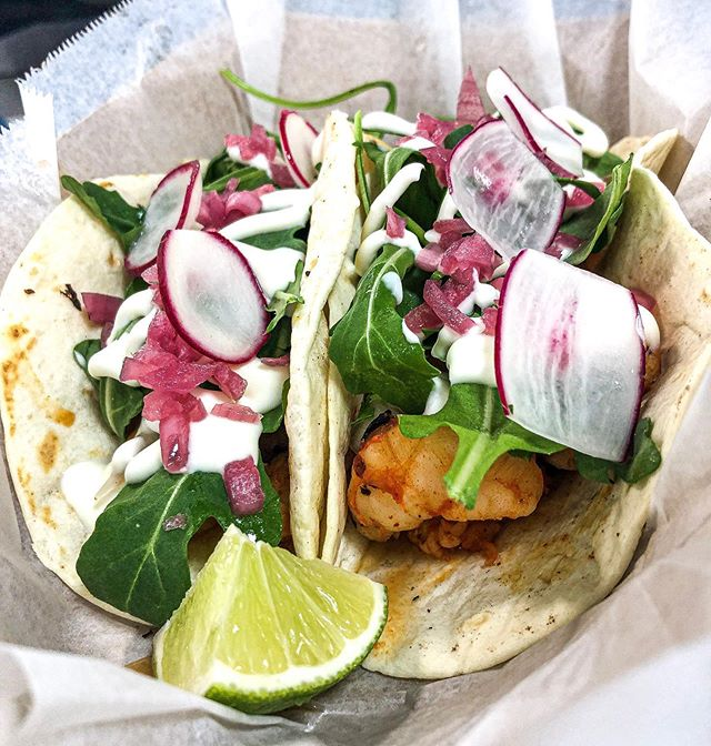 Taco Tuesday special tomorrow! Gulf shrimp tacos. Come see us by the quad 11-2:30pm tomorrow.