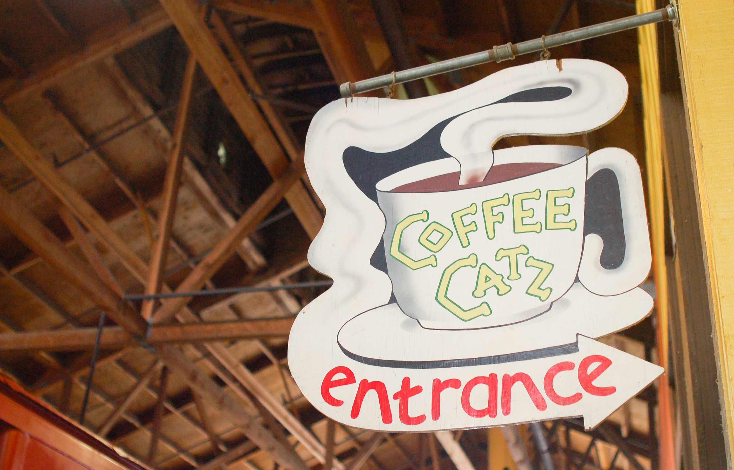 Delicious house-roasted coffee with a side of Sebastopol local charm