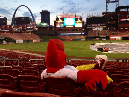 The only person who likes a rain delay is Fredbird.