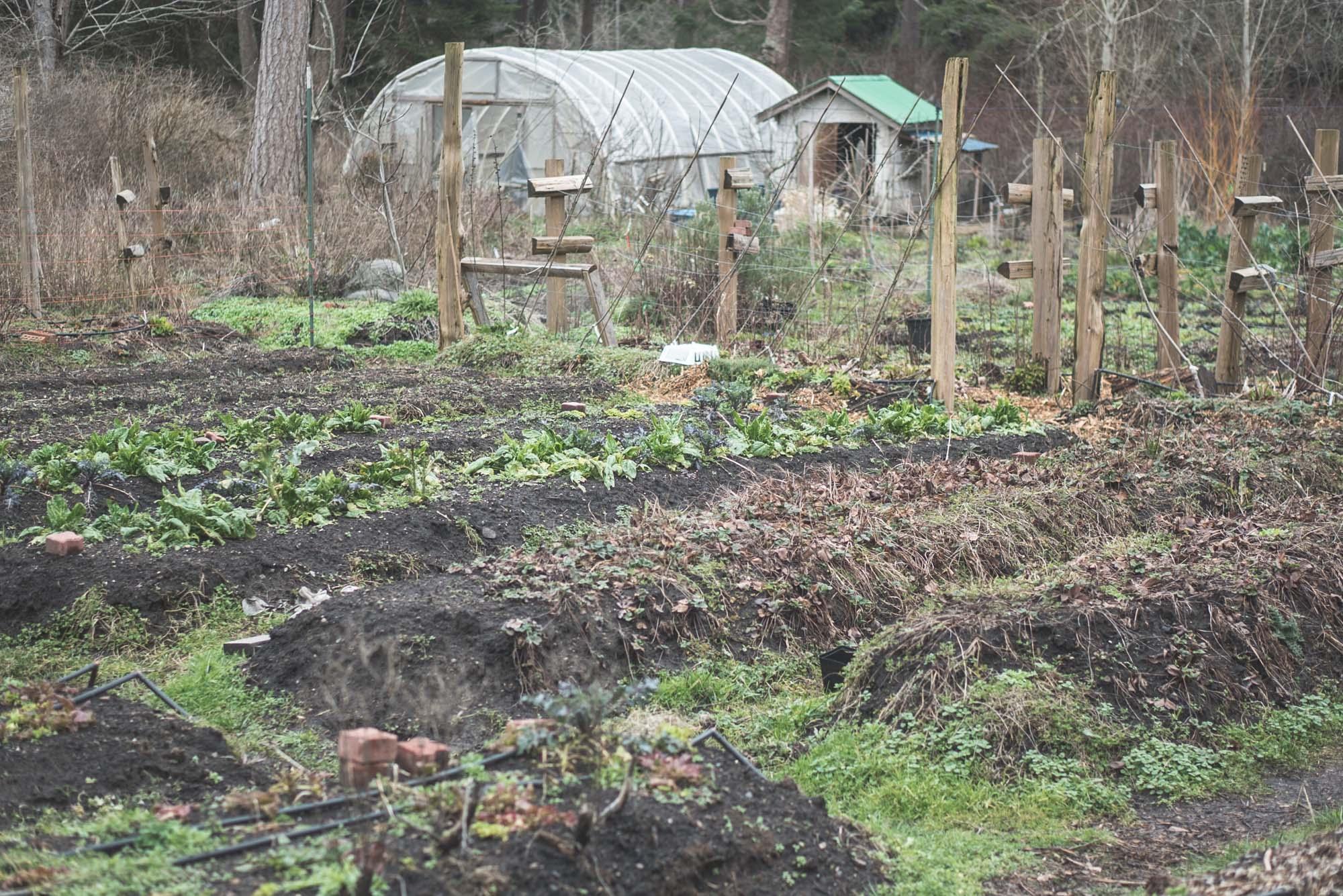 women-who-farm-over-grow-the-system-2.jpg