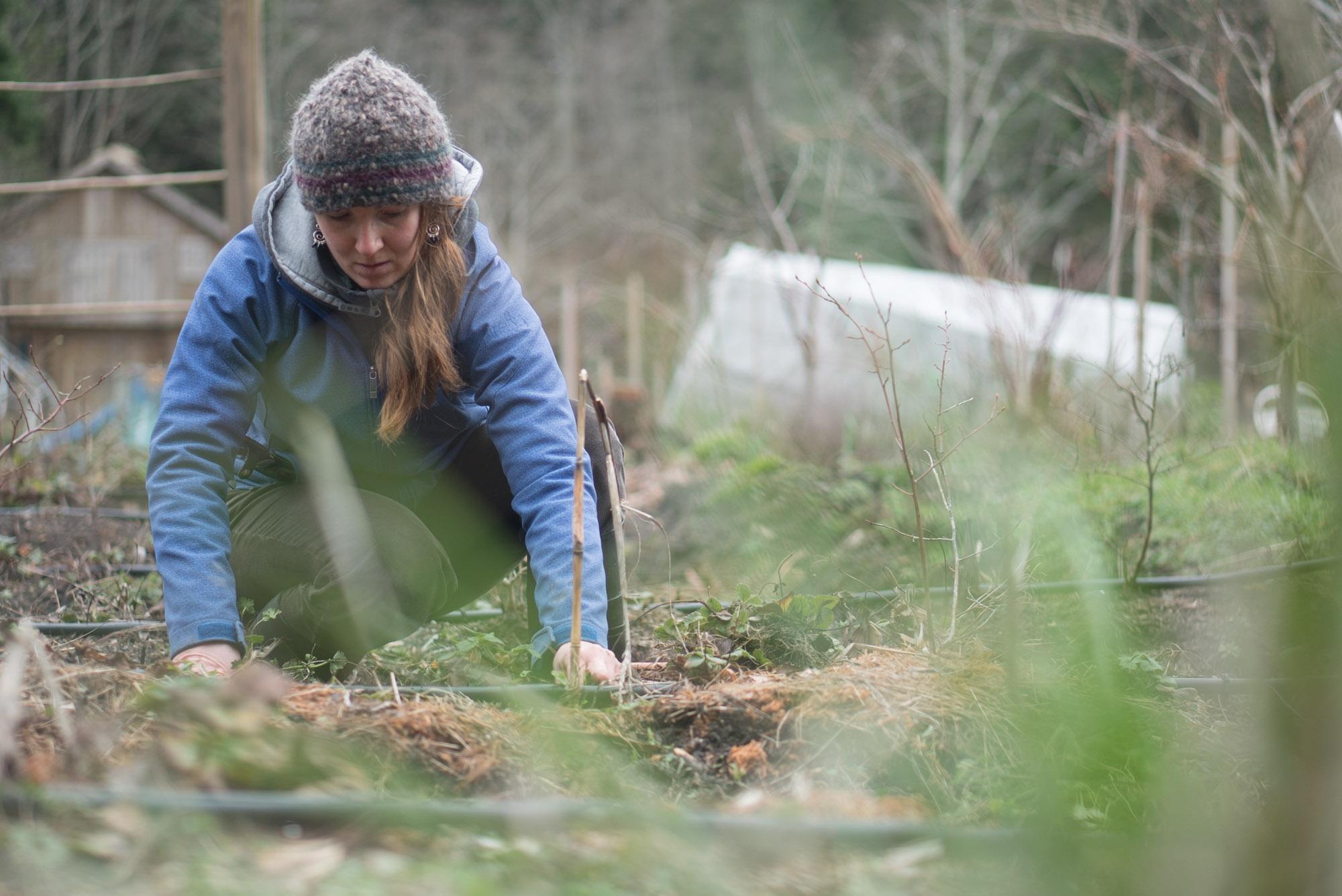 women-who-farm-over-grow-the-system-13.jpg