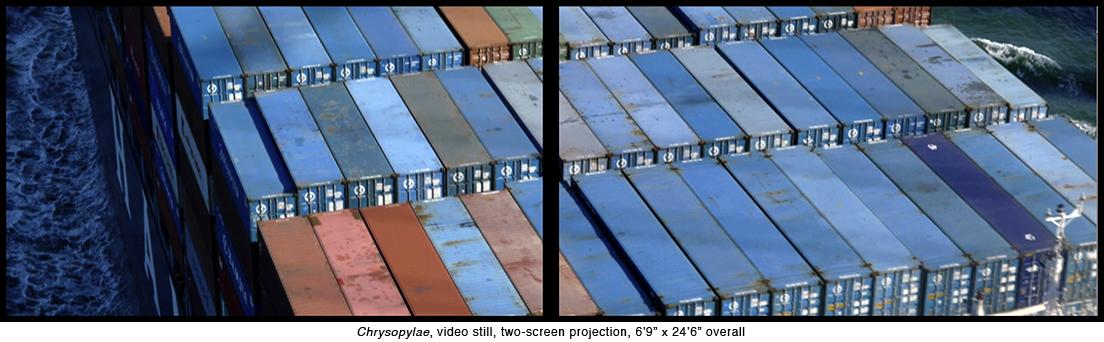 13-Chrysop screen-6.jpg