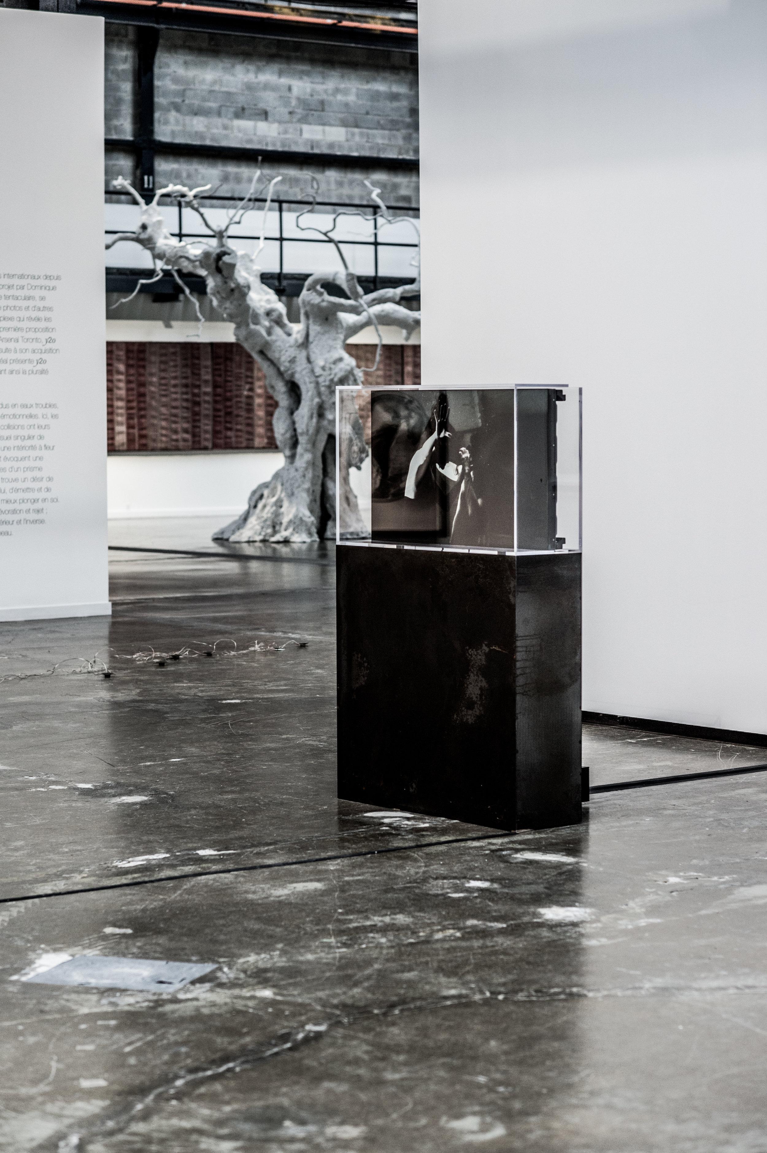 "y2o huis clos, 2015   Installation vidéo avec acier, acrylique, ordinateur et moniteur 162.5 x 106.7 x 32.4 cm (64"" x 42 ½"" x 12 ¾"") 2h 53 min 18 sec. Edition 1/2 Collection Majudia    © dominique t skoltz"