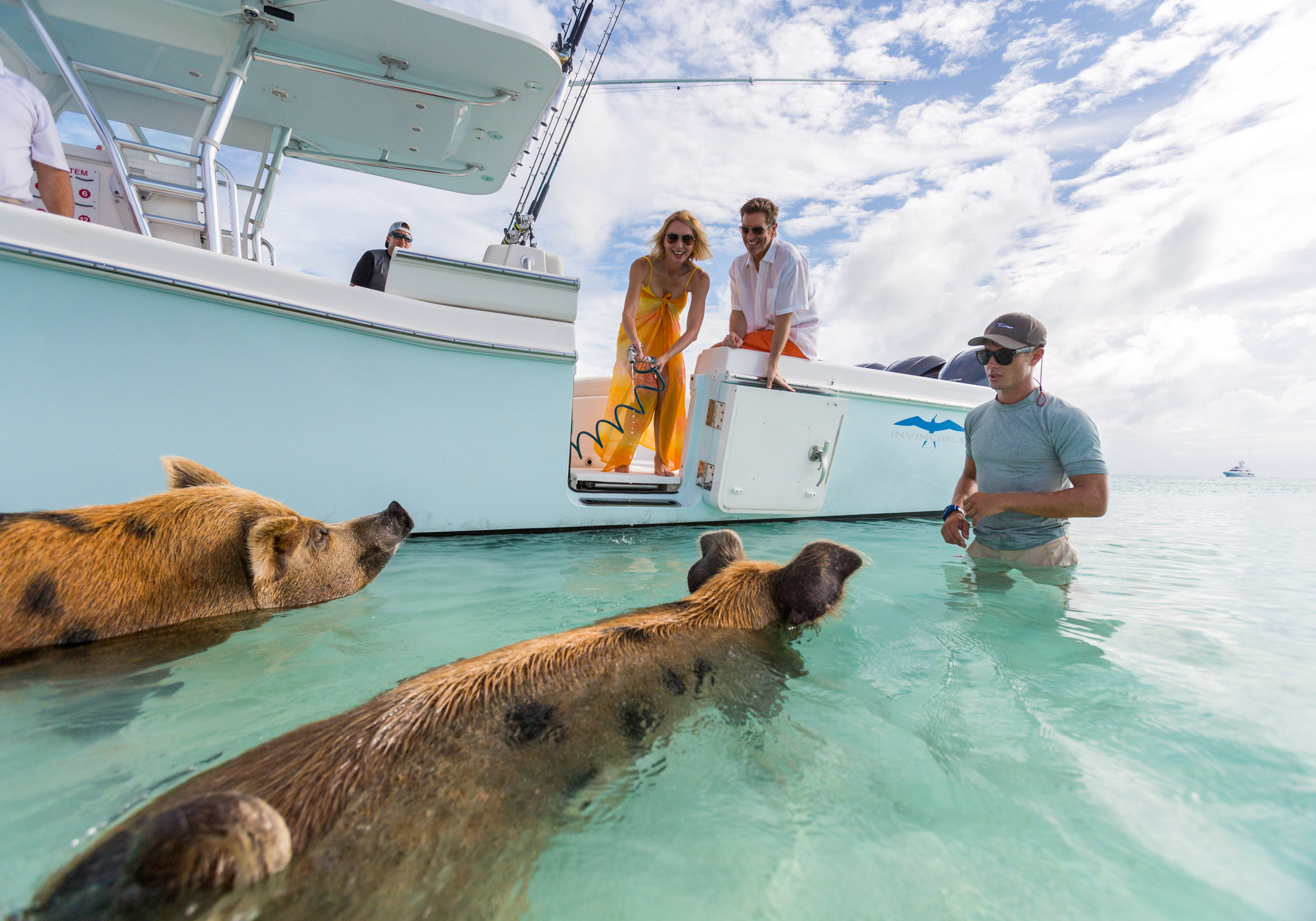 The Exumas offer a plethora of fun activities, the swimming pigs are a family favorite