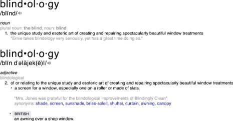 About — Blindingly Clean