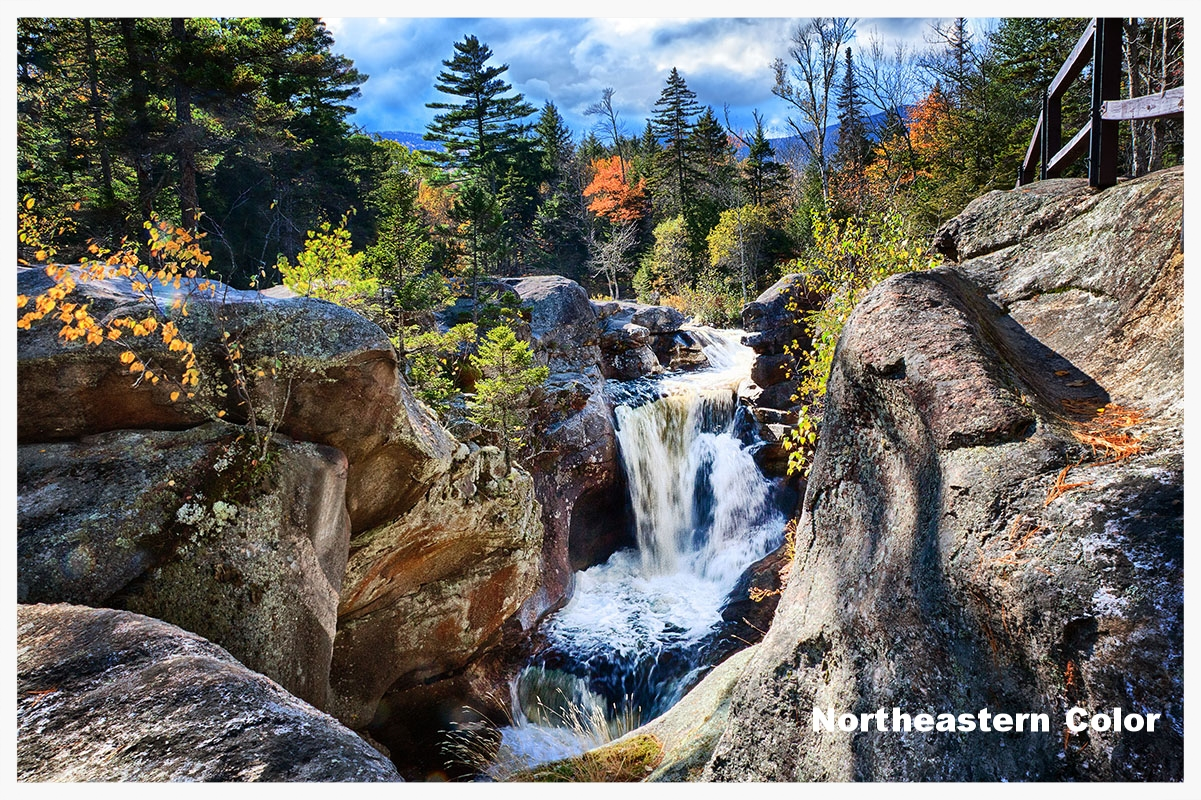 Click to view Northeastern Color Portfolio
