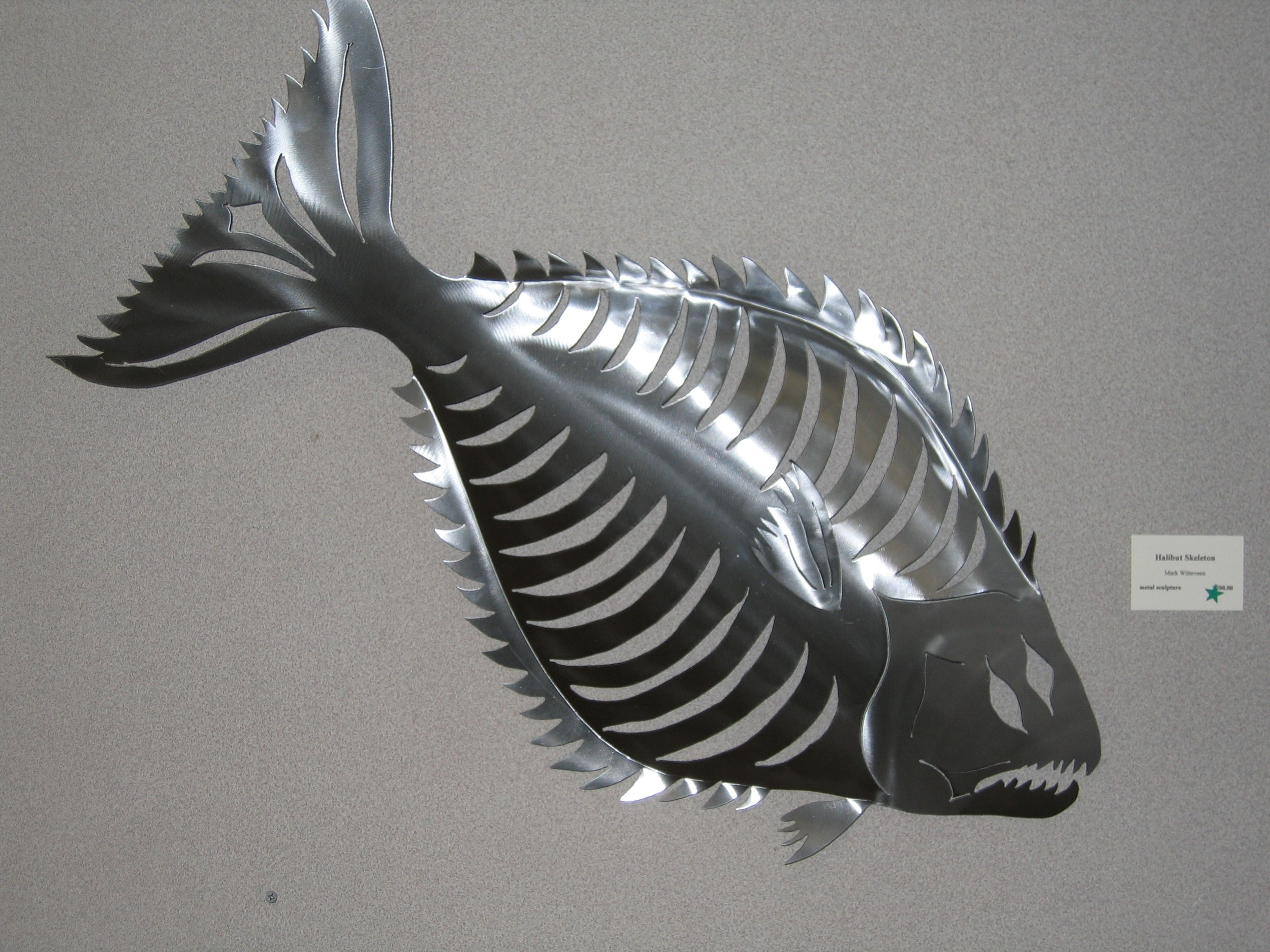 Halibut Skeleton