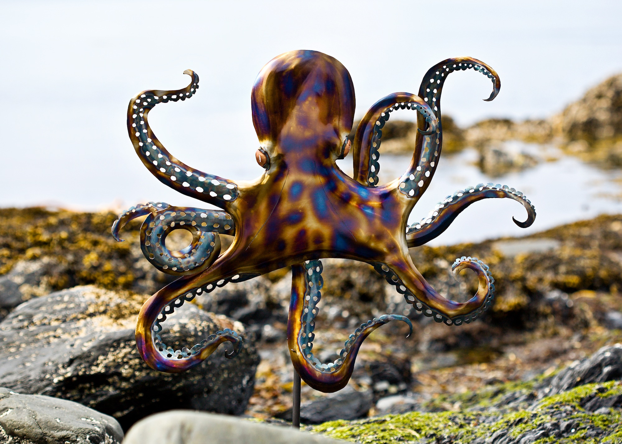 Steel Rearing Octopus