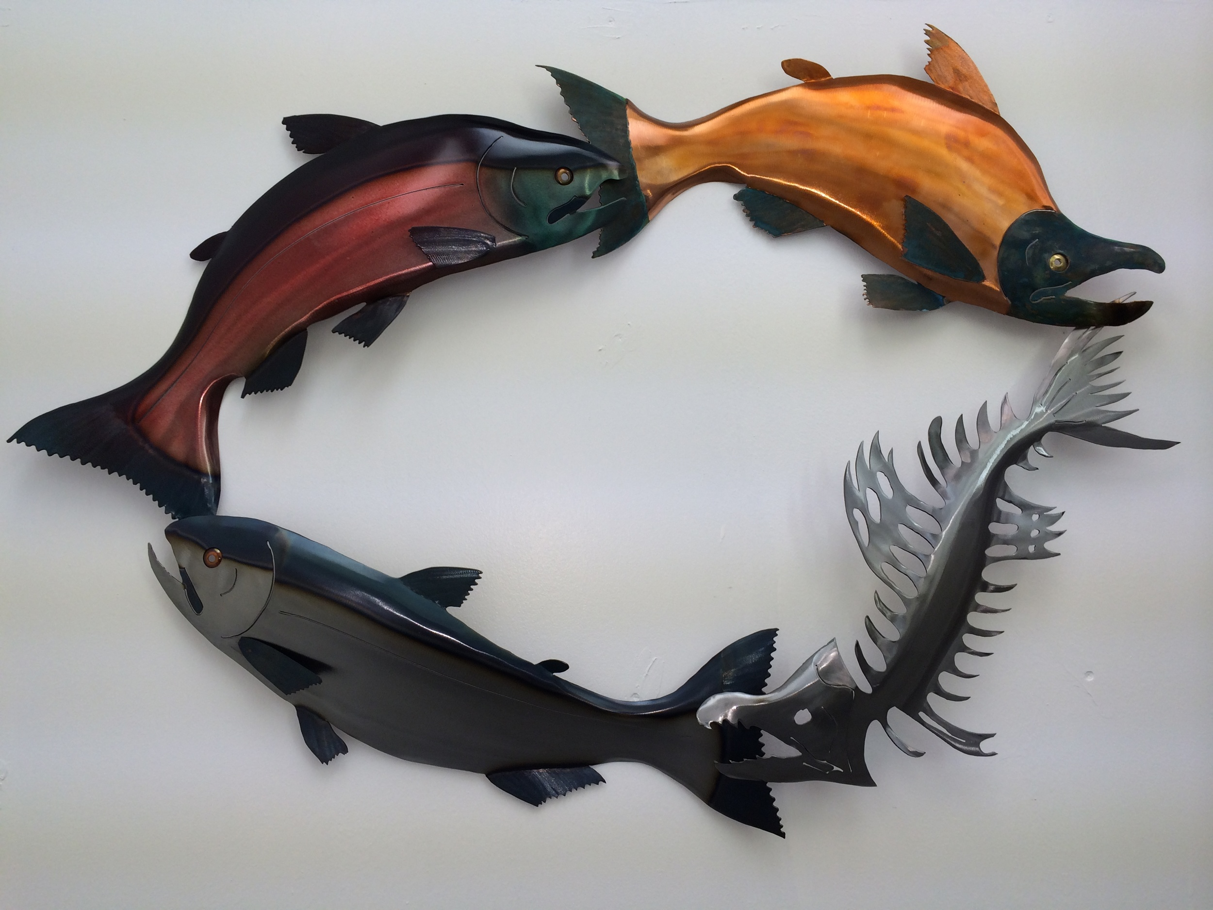 The Salmon Life Cycle
