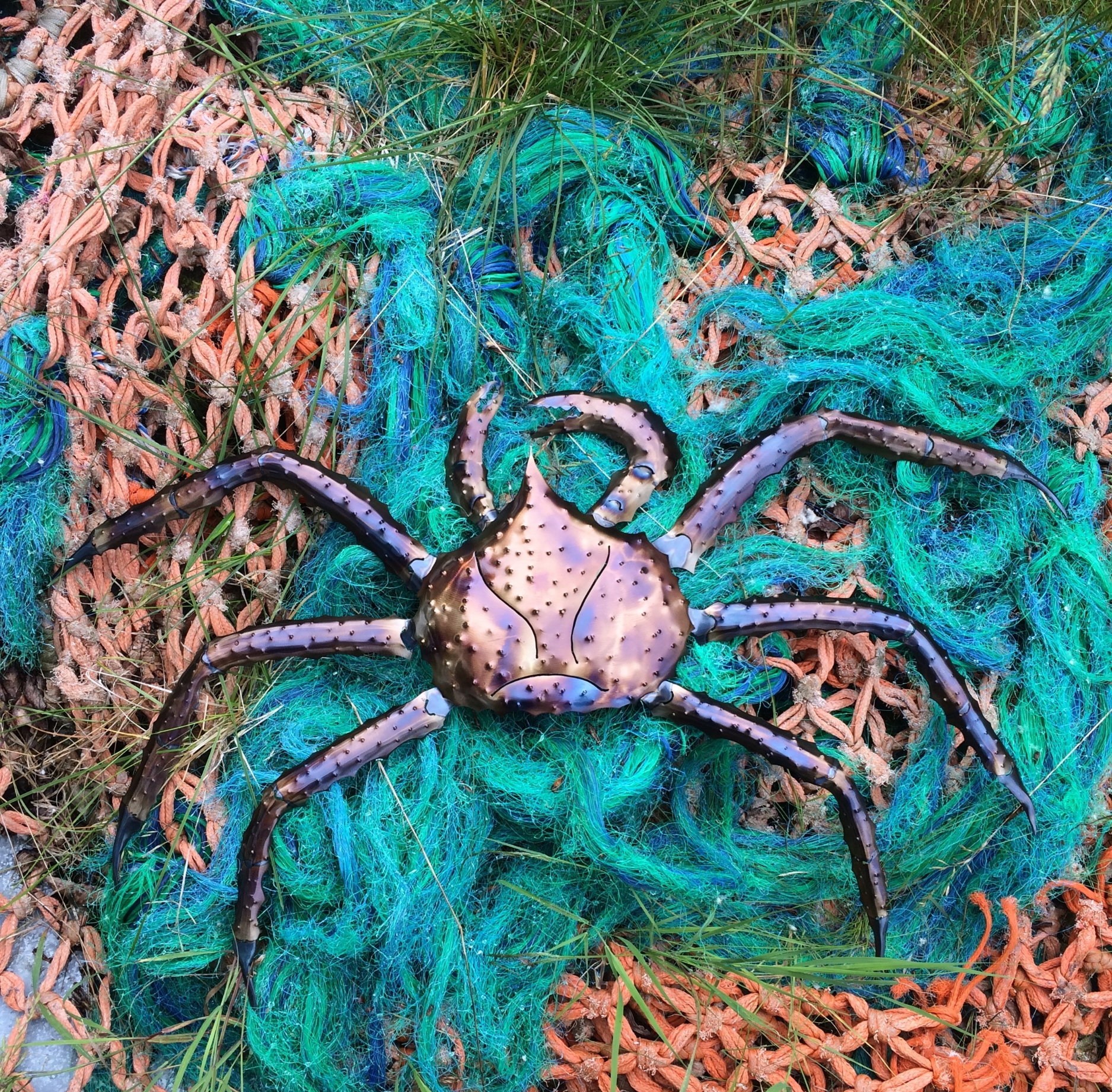 Crab On Net