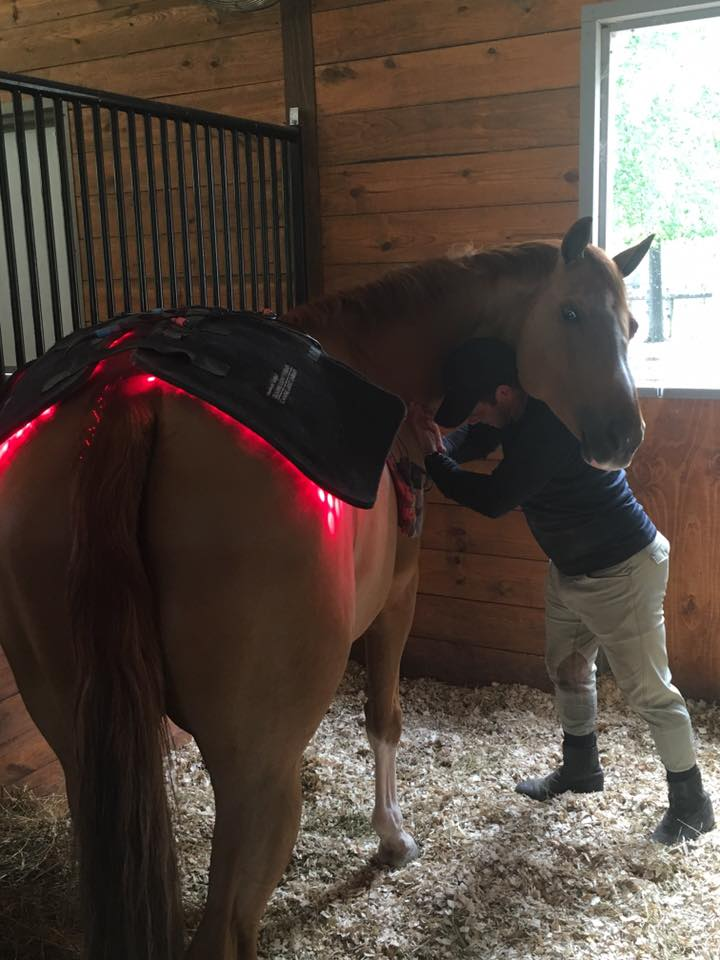 Multiple Large Light Therapy pads hooked together