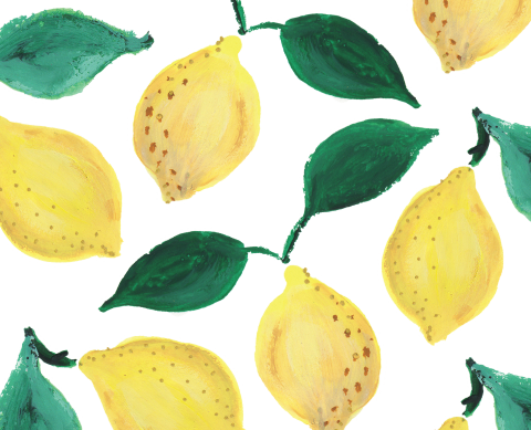 lemon-liner-15-15.png