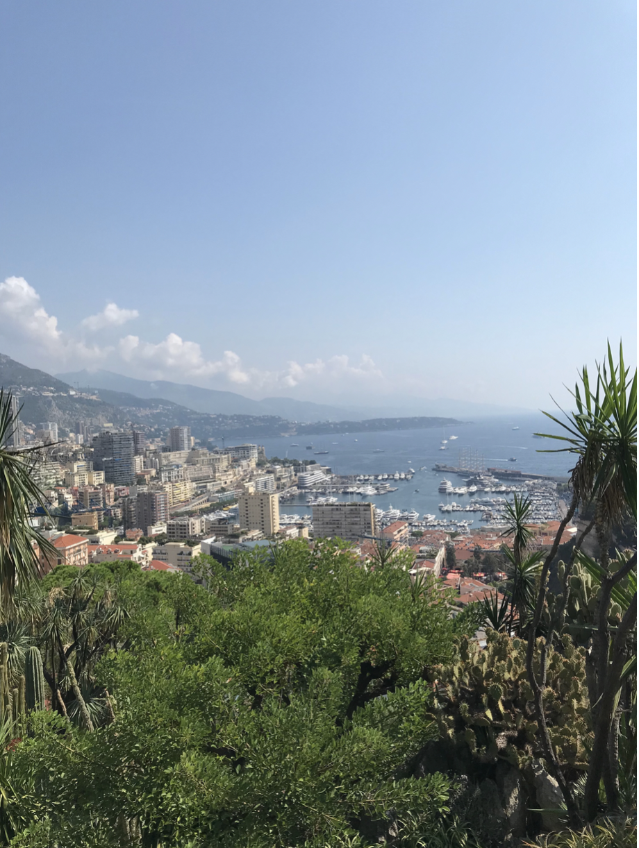 View from Le Jardin Exotique, Monaco