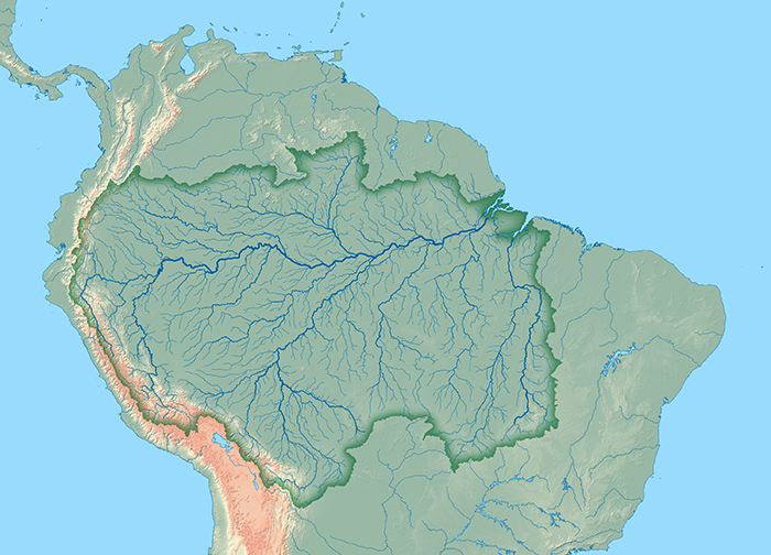 """The largest river in the world runsthrough the largest forest… a forestwhich is practically unlimited"" - This is how the fabled botanist Richard Spruce described Amazonia in 1851."