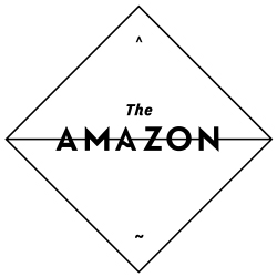 The Amazon_Logo_250PX.jpg