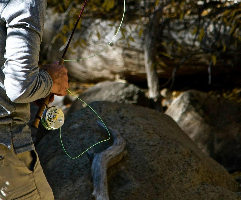 baetis-and-stones-heritage-trout-10.jpg