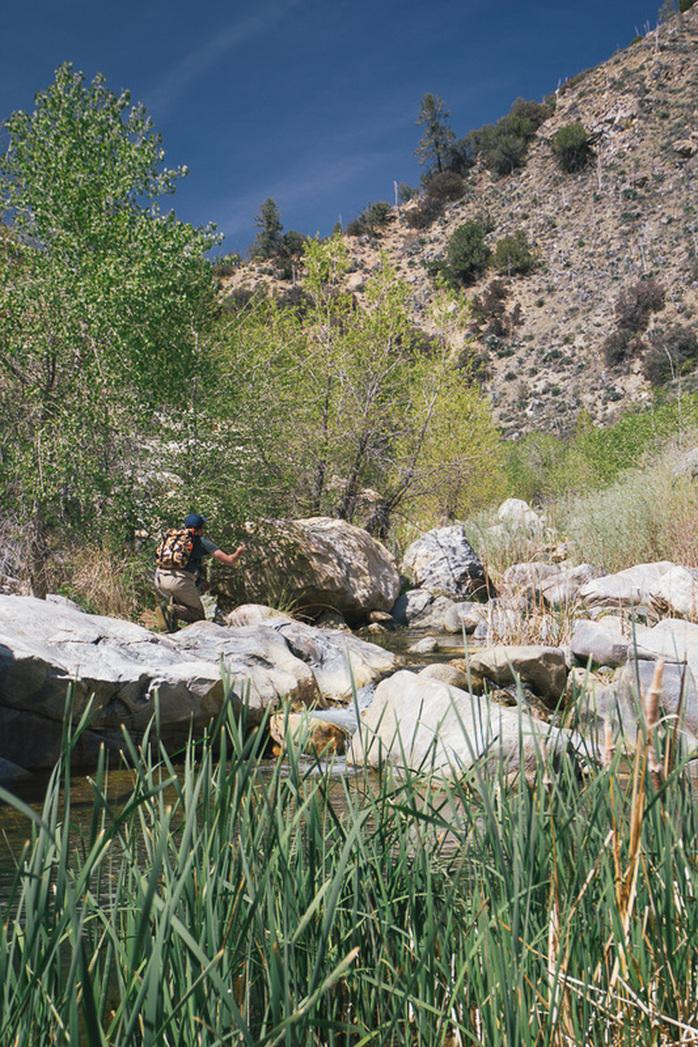 baetis-and-stones-small-streams-10.jpg