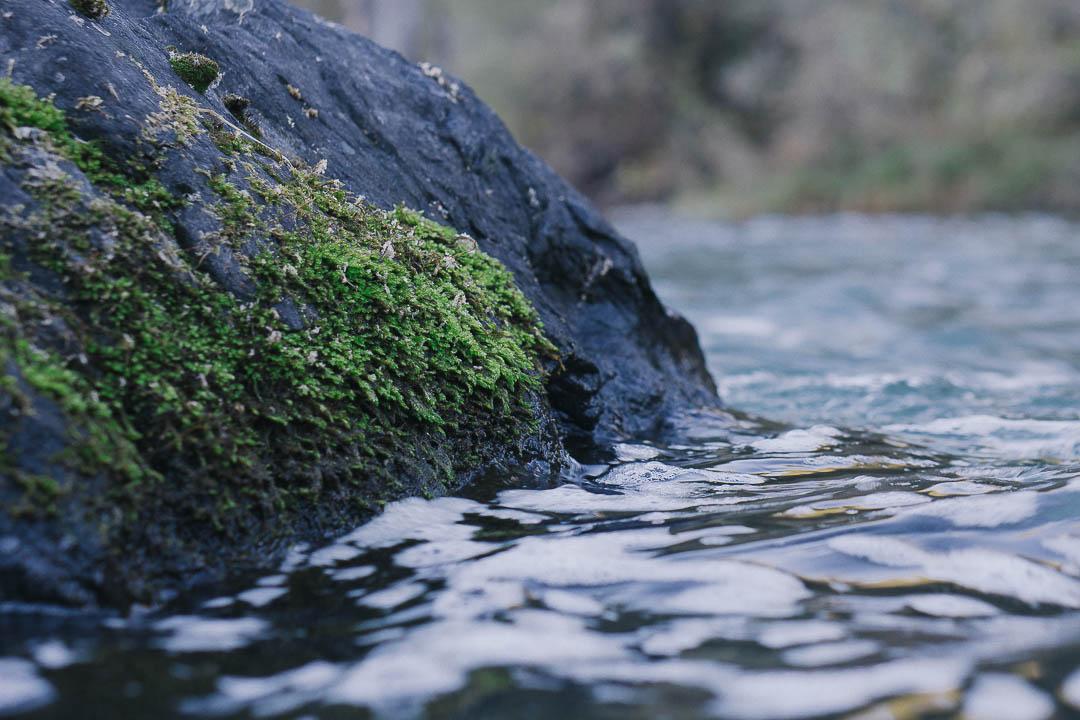 baetis-and-stones-steelhead-season-3.jpg