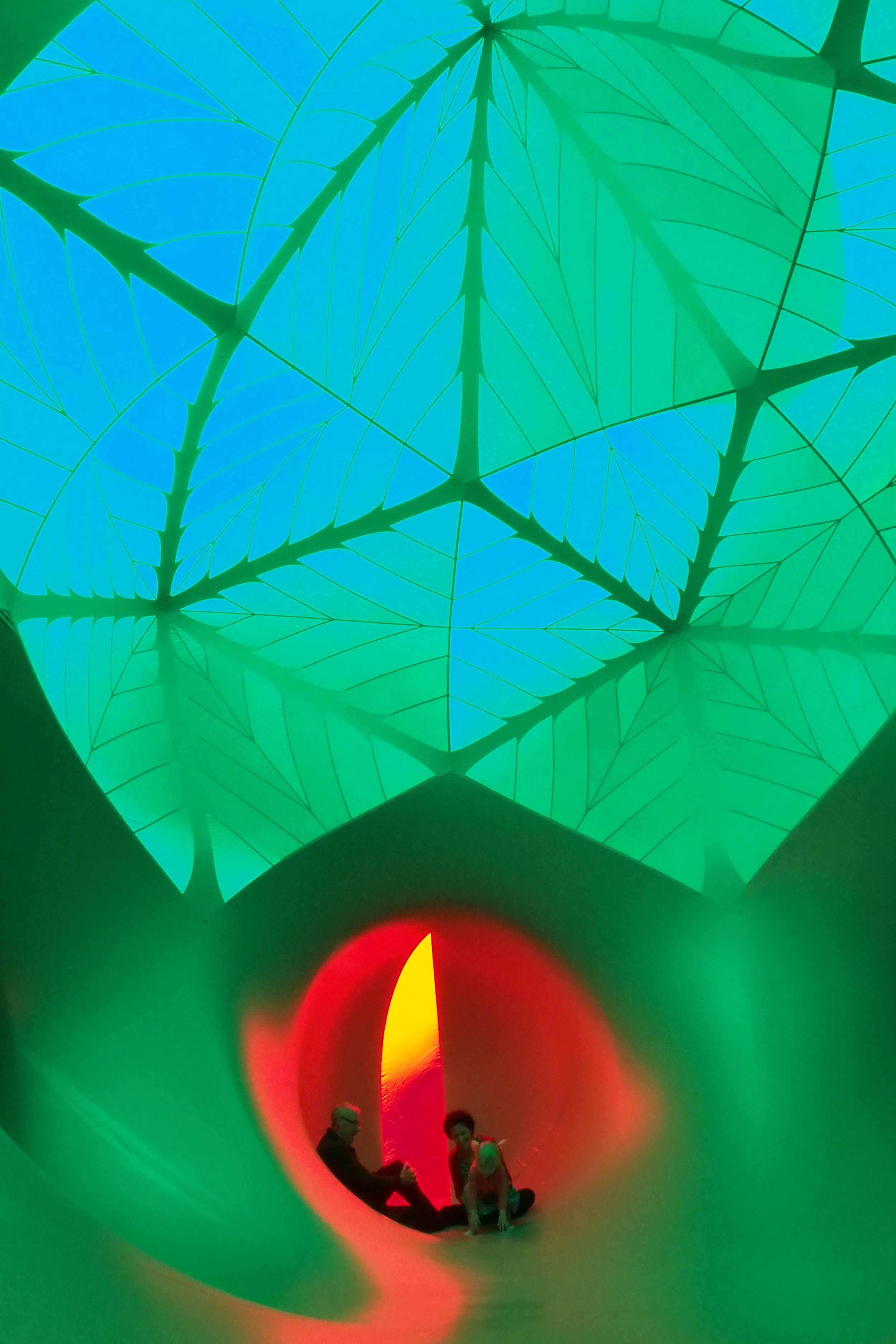 Arboria internal - Green Dome2.jpg