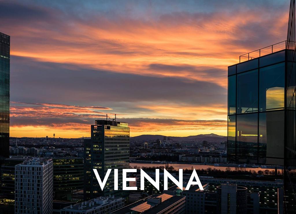 Jennifer Milar in Vienna - Cellular Transfromation.jpg