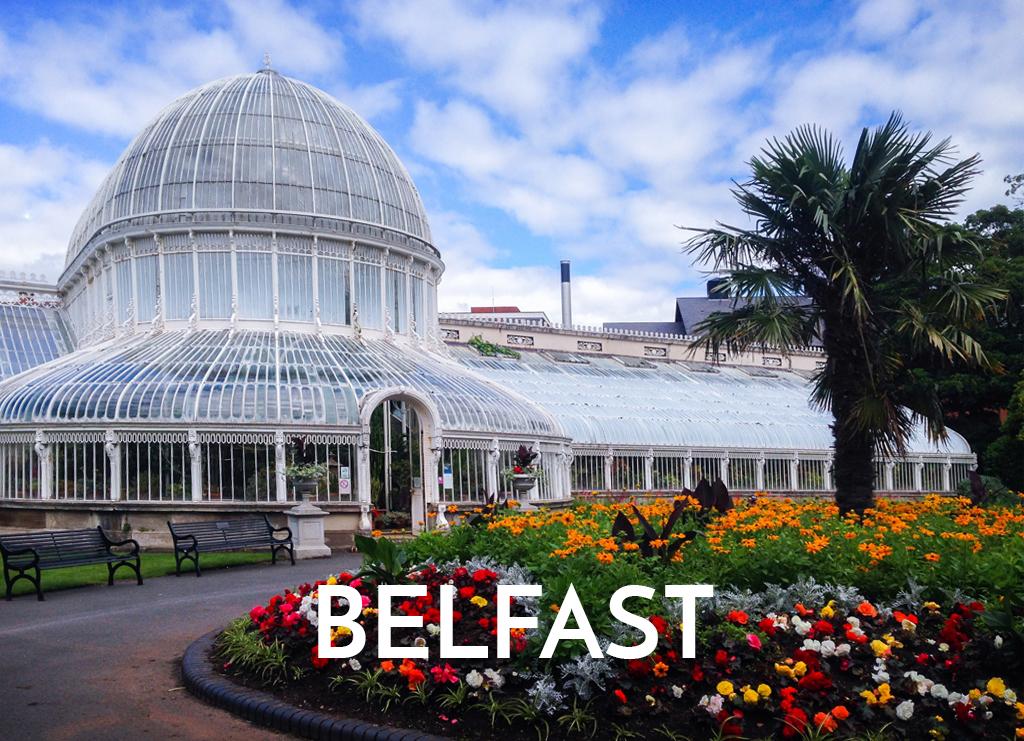 Jennifer Millar in Belfast - Cellular Transformation.jpg
