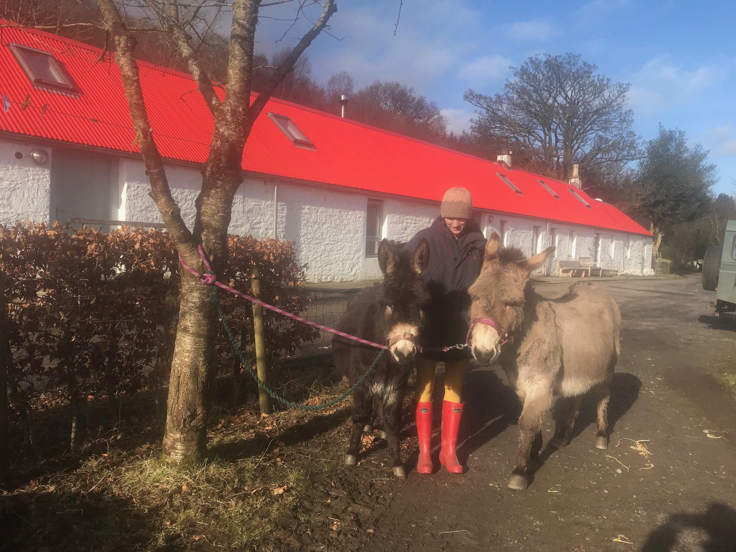 Erin and donkeys.jpeg