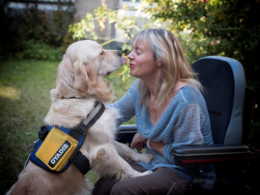 Meet the assistance dogs changing lives - Published in Flanders Today, July 2016