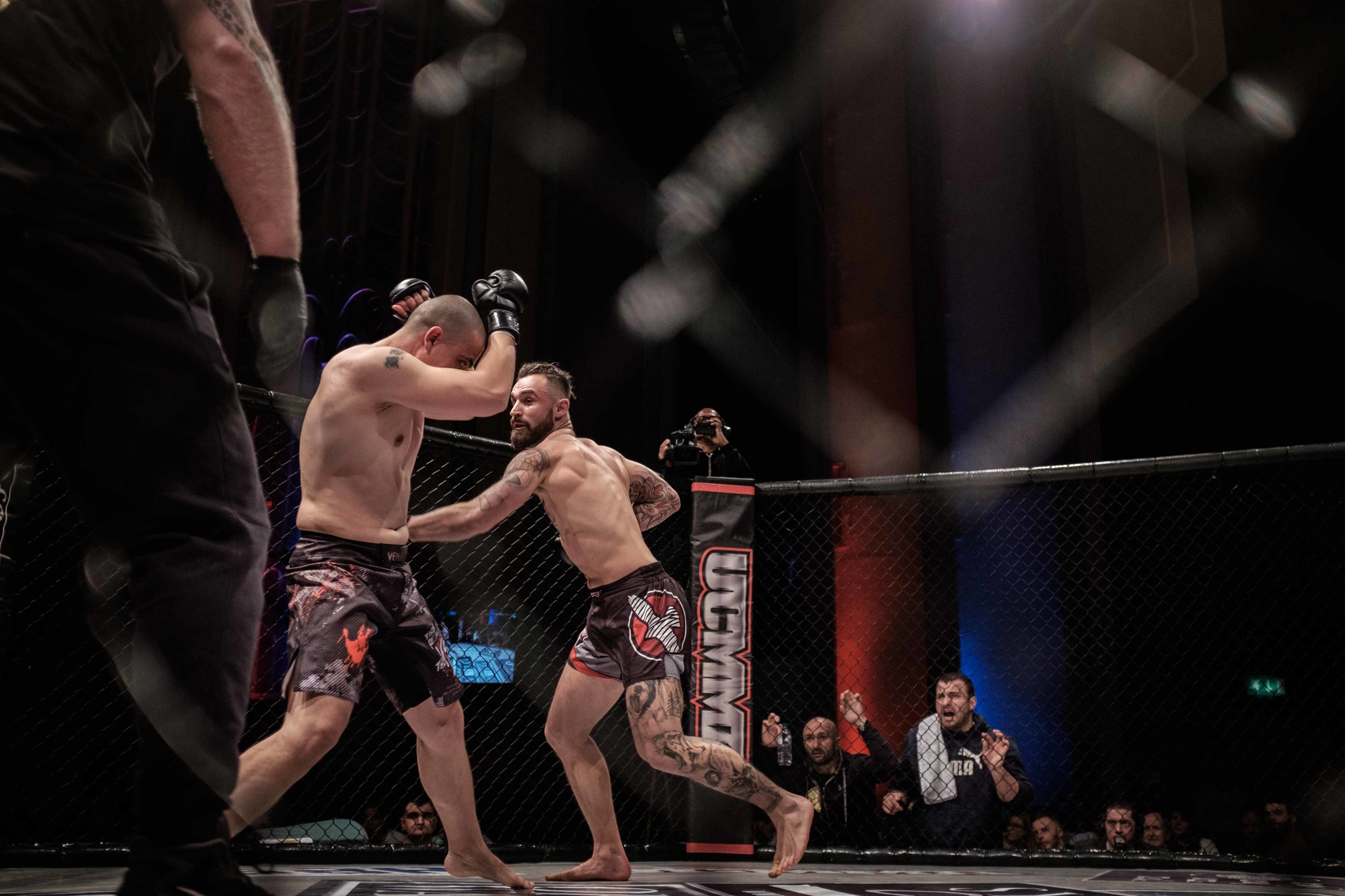 into the cage-9018.jpg