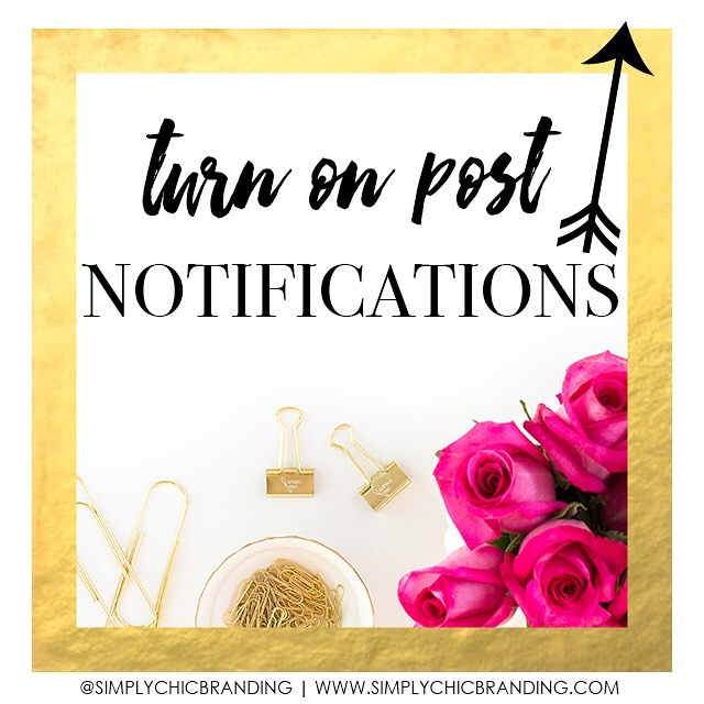 It's not too late! Tap the 3 dots (•••) to turn on post notifications for this page and keep us in your feed. Thanks for following! XO